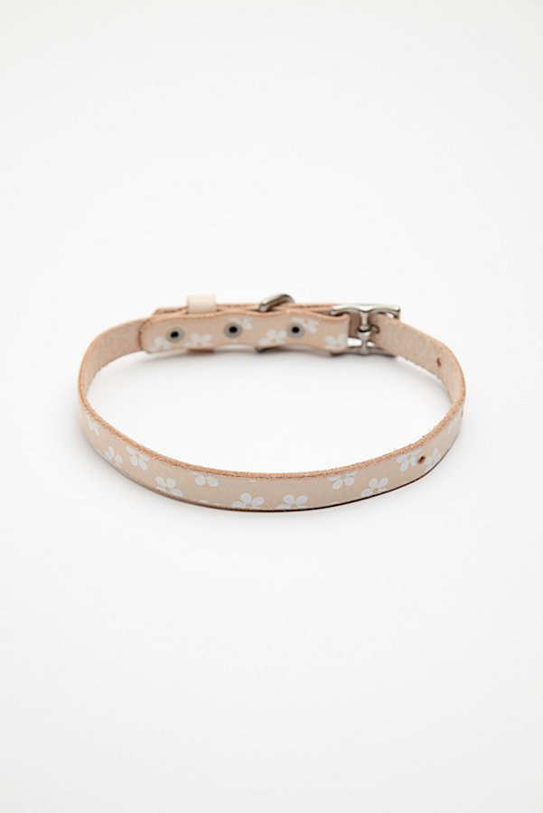 Slide View 3: Daisy Paint Leather Collar