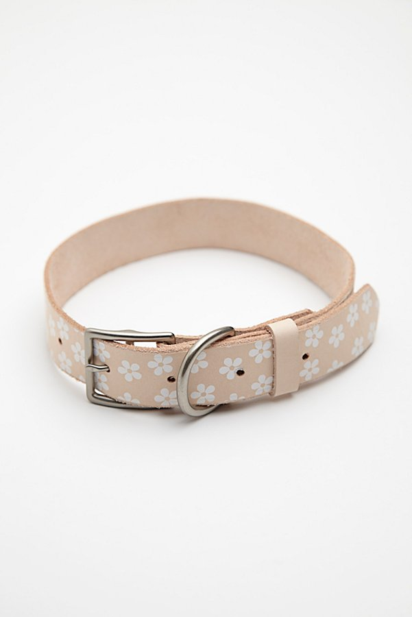Slide View 4: Daisy Paint Leather Collar