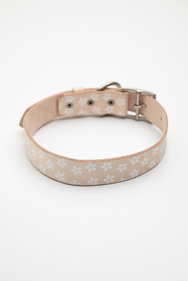 Slide View 5: Daisy Paint Leather Collar