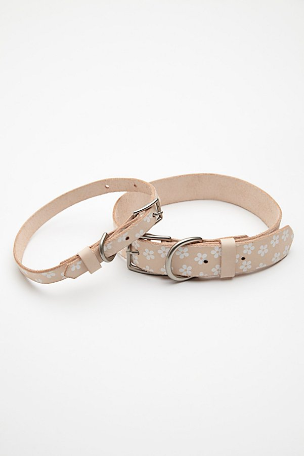 Slide View 6: Daisy Paint Leather Collar
