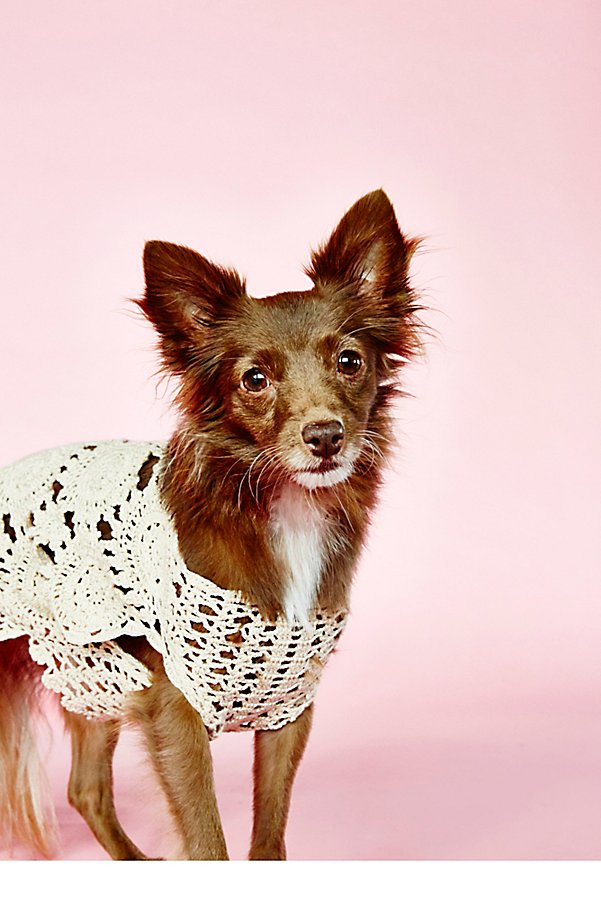 Slide View 1: Doggy Daydream Crochet Sweater