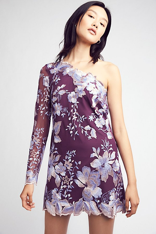 Slide View 2: Rosalie Embroidered Mini Dress