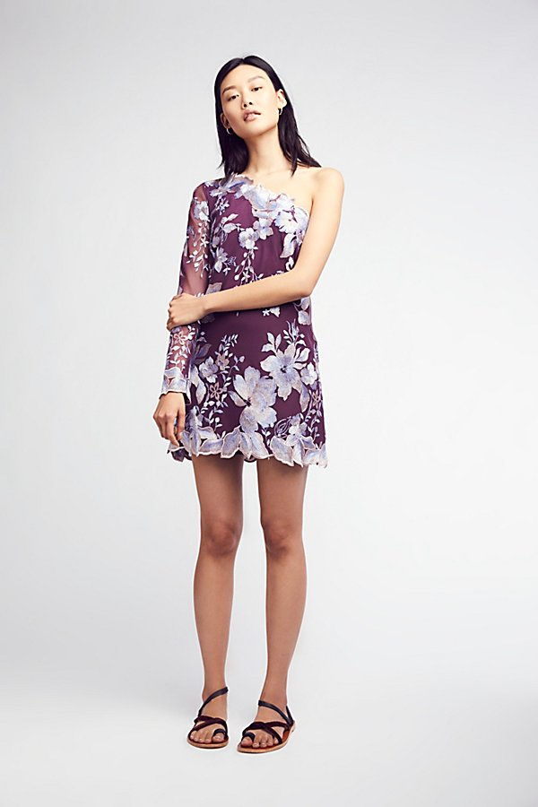 Slide View 5: Rosalie Embroidered Mini Dress