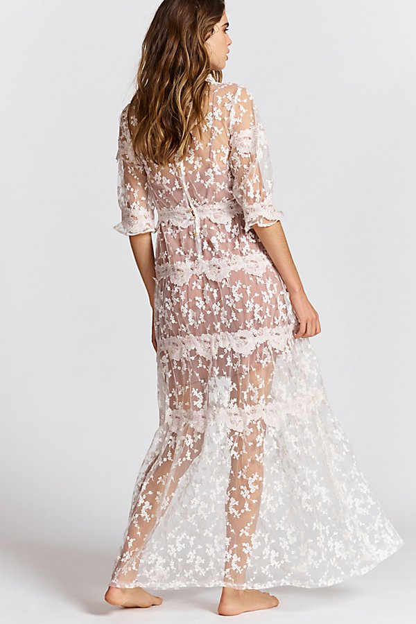 Slide View 2: Rosebud Embroidered Mesh Maxi Dress
