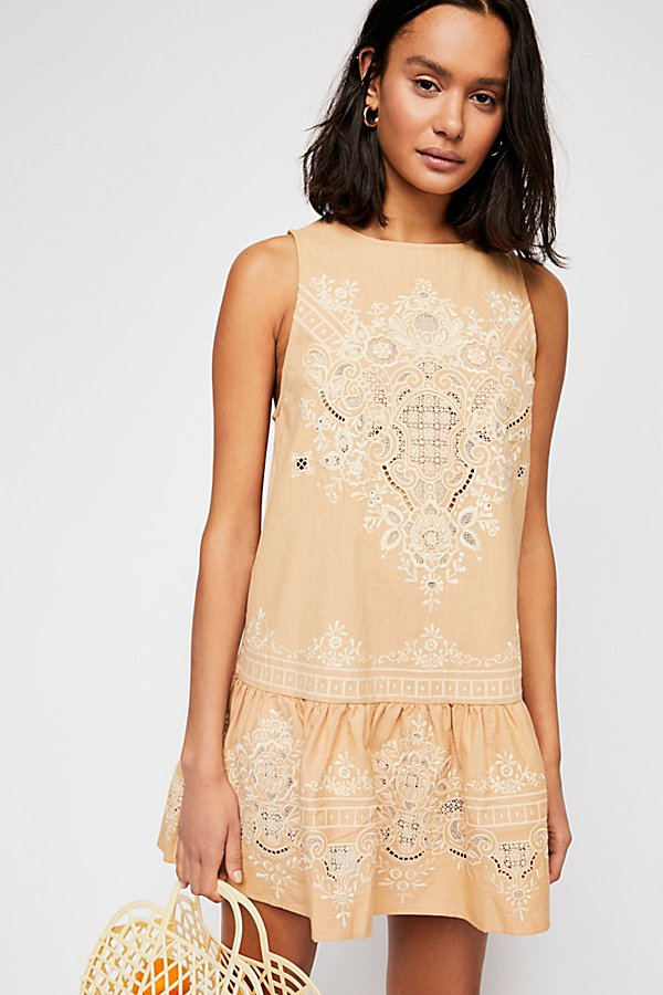 Slide View 1: Darling Embroidered Mini Dress